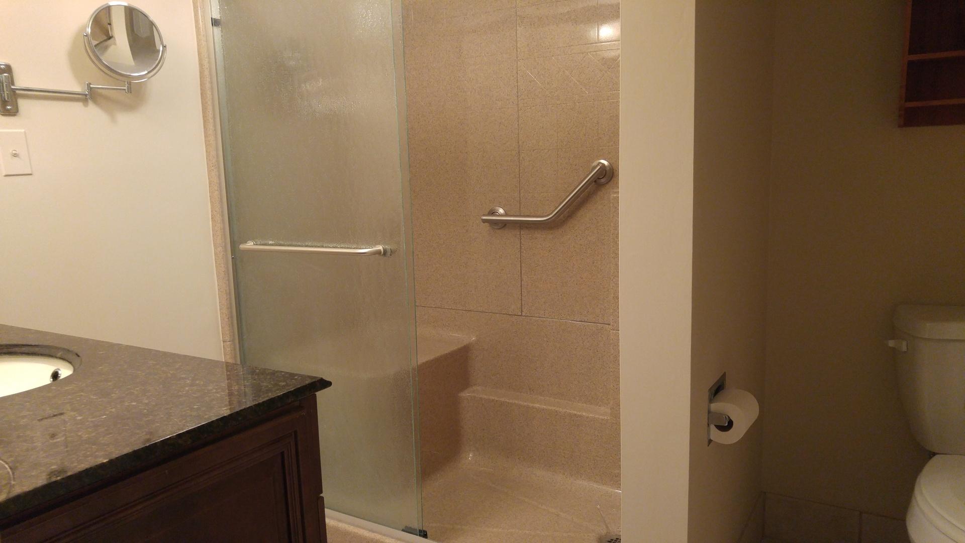 Shower, Shower Doors and Grab Bar Install